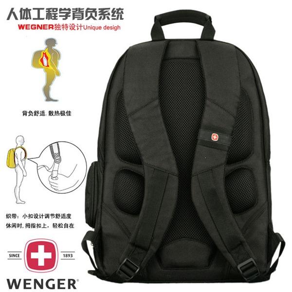 wenger_s008_2